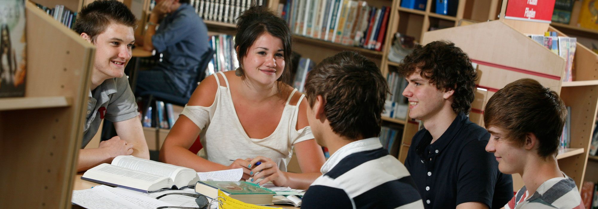 Male and female Sifth Form students studying