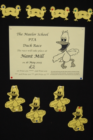The Great Maelor Duck Race