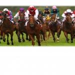 RACE NIGHT - OVER £800 Raised!!